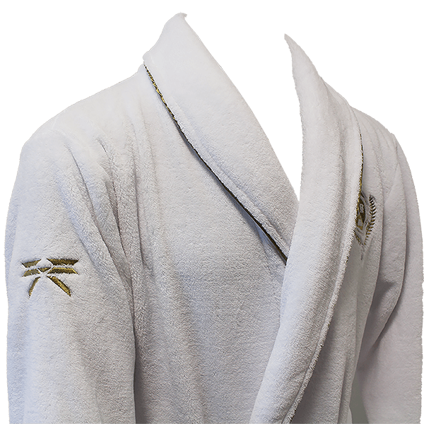 Destiny 2 Guardian Bathrobe